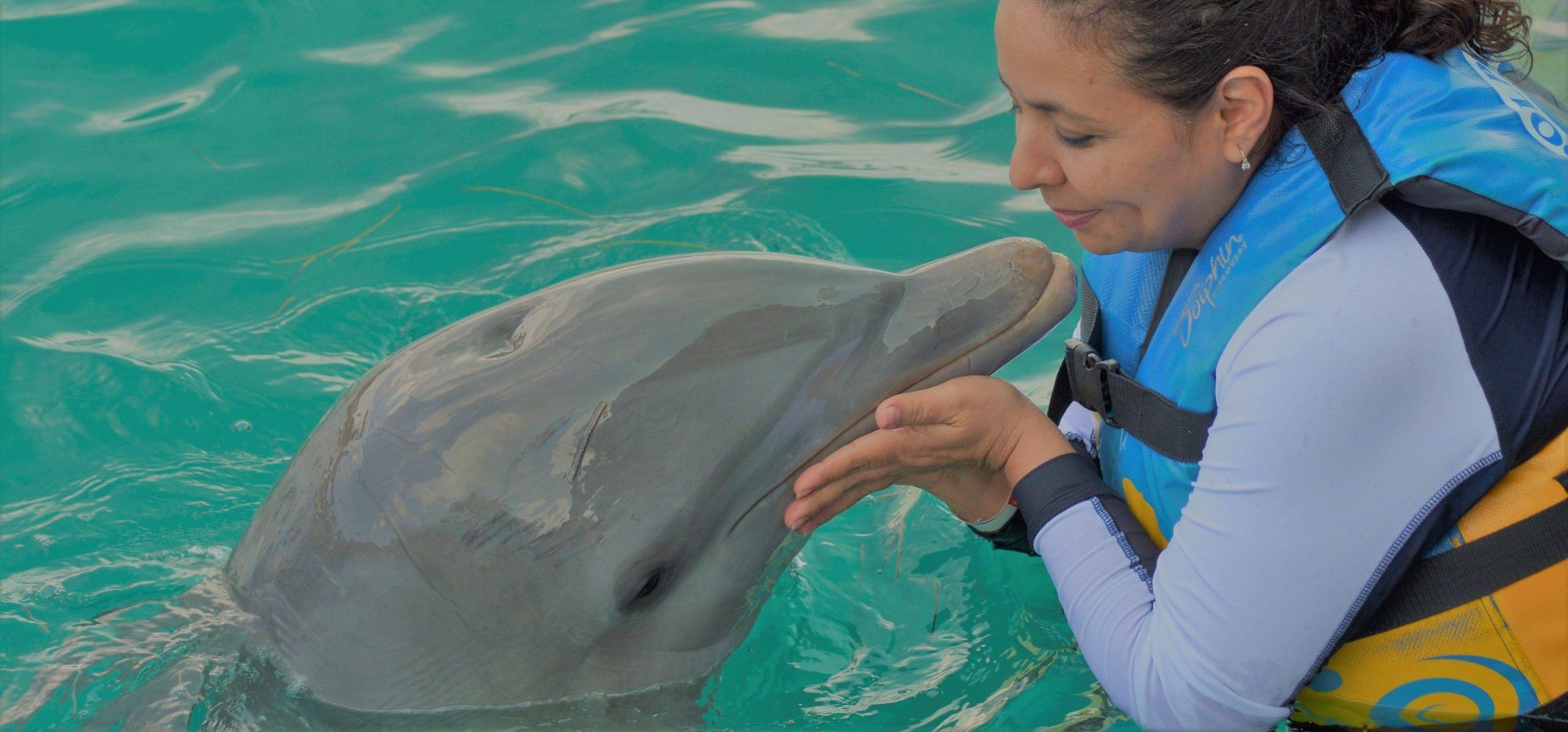 Delfinek fogságban: Te szórakozol, ők szenvednek…