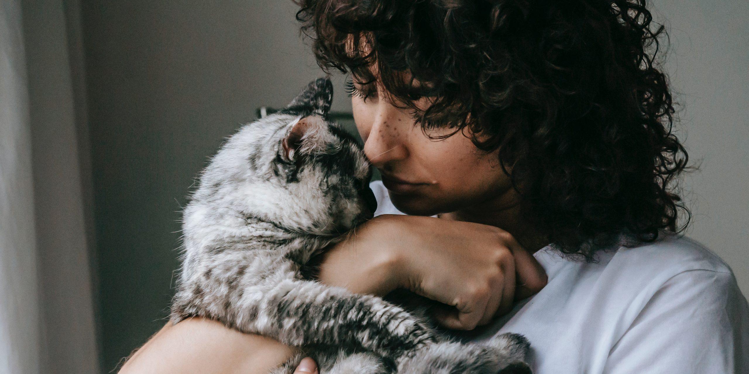 Csak a macskám vár haza esténként, de többet remélek az élettől…