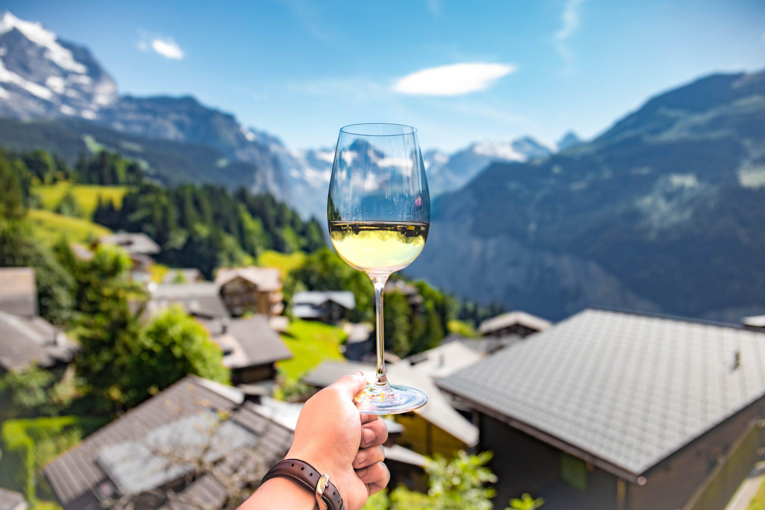 Van-e izlandi bor – avagy hol terem a szőlő?