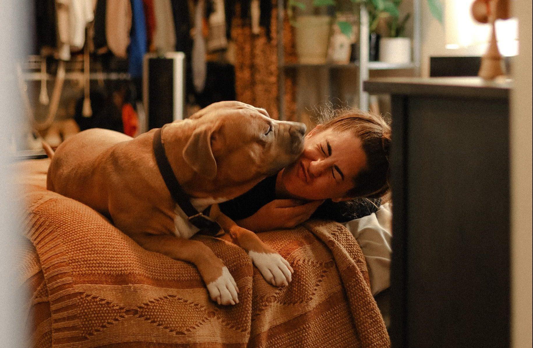 A kutyámmal alszom – és akkor mi van?